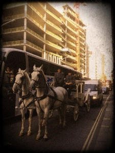 Horses and carriage in rush hour traffic on Victoria Street